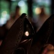 Tomasz Ossoliński for Gino Rossi - prezentacja limitowanej kolekcji butów